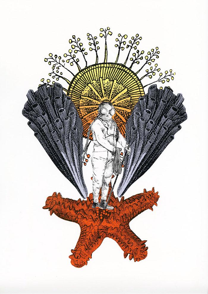 starfishman1
